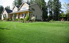DeWitt MI Lawn Care Maintenance