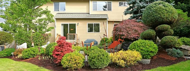 DeWitt MI Commercial Small Tree & Shrubbery Pruning & Trimming